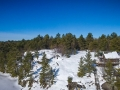 areal photo of rocky pines