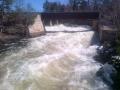 Bala waterfalls springtime